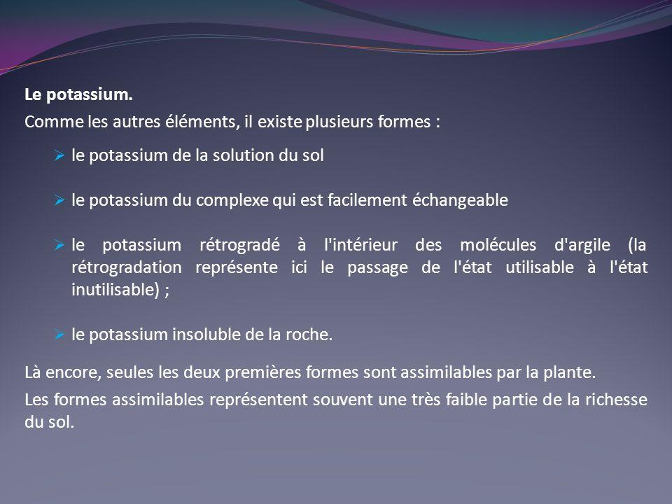 Le potassium.