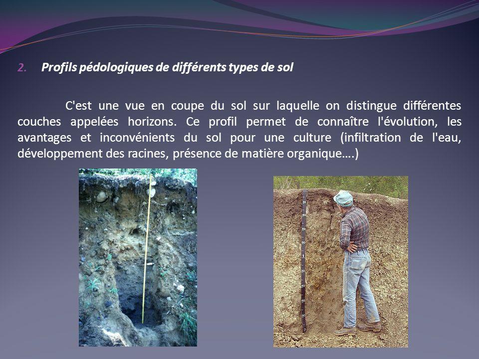 2. Profils pédologiques de différents types de sol C'est une vue en coupe du sol sur laquelle on distingue différentes couches appelées horizons. Ce p