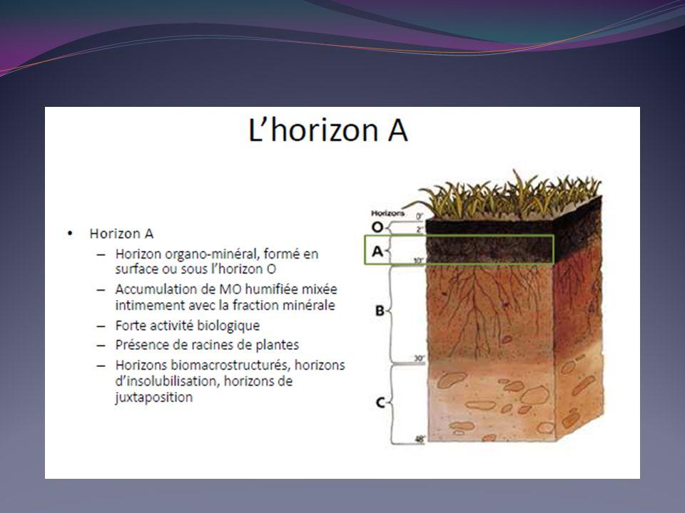 c.L argile Elle est de taille inférieure à 2 microns, possède les propriétés d un colloïde.
