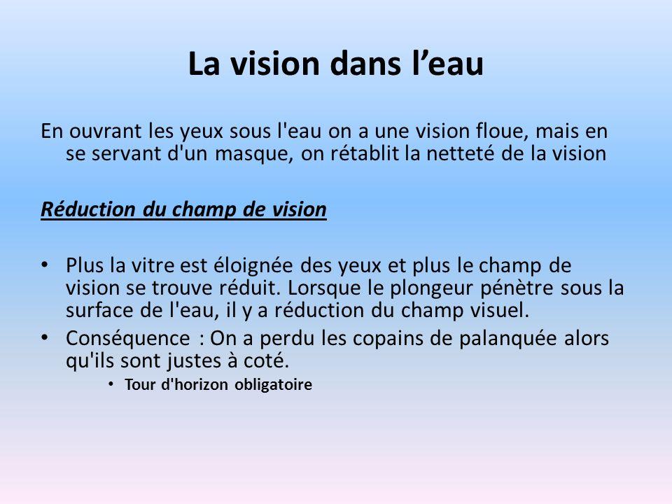 La vision dans leau En ouvrant les yeux sous l'eau on a une vision floue, mais en se servant d'un masque, on rétablit la netteté de la vision Réductio