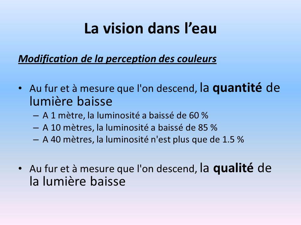 La vision dans leau Modification de la perception des couleurs Au fur et à mesure que l on descend, la quantité de lumière baisse – A 1 mètre, la luminosité a baissé de 60 % – A 10 mètres, la luminosité a baissé de 85 % – A 40 mètres, la luminosité n est plus que de 1.5 % Au fur et à mesure que l on descend, la qualité de la lumière baisse