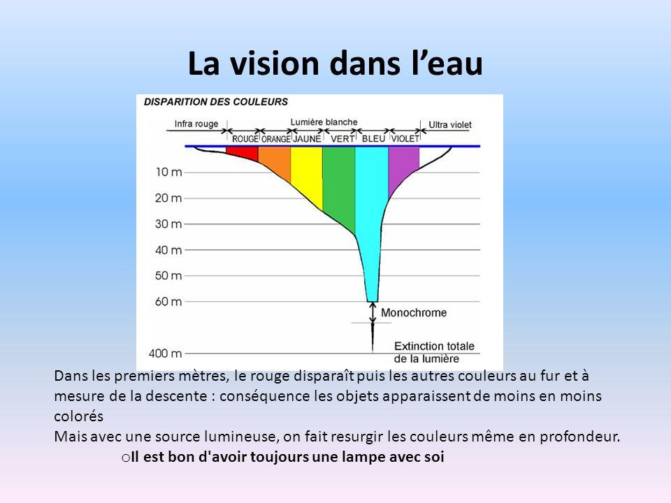 La vision dans leau Dans les premiers mètres, le rouge disparaît puis les autres couleurs au fur et à mesure de la descente : conséquence les objets a