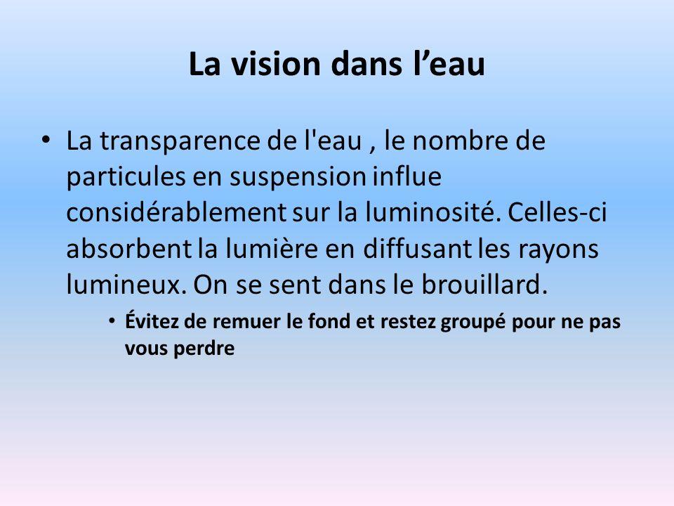 La vision dans leau La transparence de l'eau, le nombre de particules en suspension influe considérablement sur la luminosité. Celles-ci absorbent la