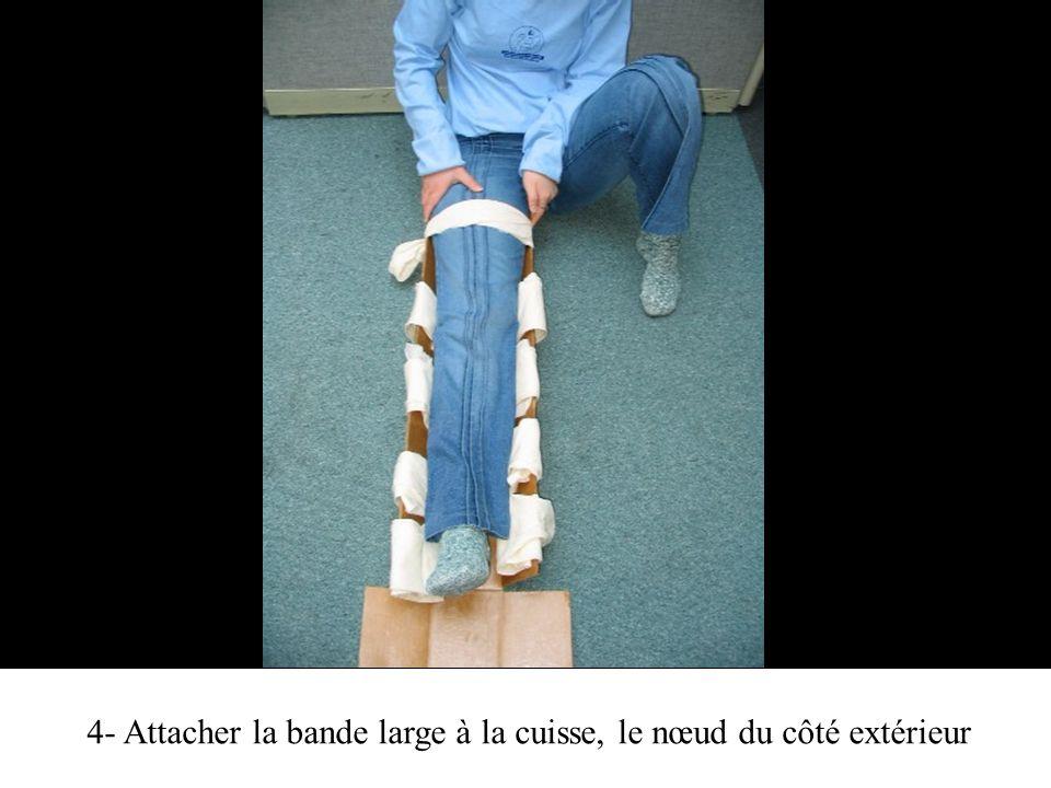 4- Attacher la bande large à la cuisse, le nœud du côté extérieur
