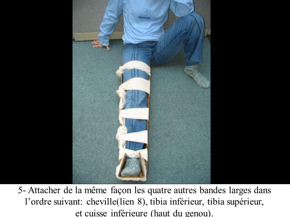 5- Attacher de la même façon les quatre autres bandes larges dans lordre suivant: cheville(lien 8), tibia inférieur, tibia supérieur, et cuisse inférieure (haut du genou).