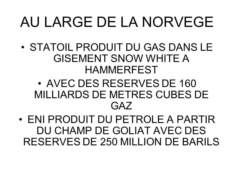 AU LARGE DE LA NORVEGE STATOIL PRODUIT DU GAS DANS LE GISEMENT SNOW WHITE A HAMMERFEST AVEC DES RESERVES DE 160 MILLIARDS DE METRES CUBES DE GAZ ENI P