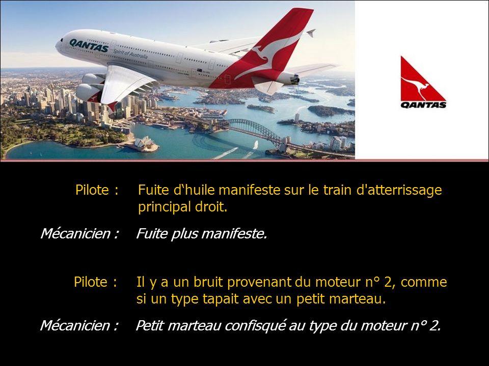 Mécanicien :Fuite plus manifeste. Pilote :Fuite dhuile manifeste sur le train d'atterrissage principal droit. Mécanicien :Petit marteau confisqué au t