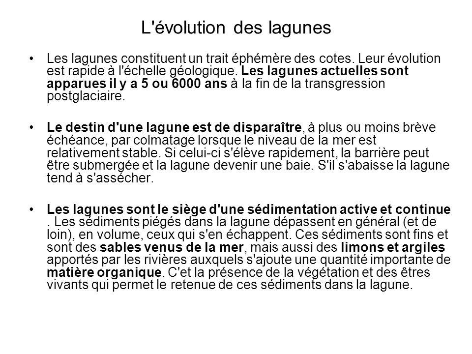 L'évolution des lagunes Les lagunes constituent un trait éphémère des cotes. Leur évolution est rapide à l'échelle géologique. Les lagunes actuelles s