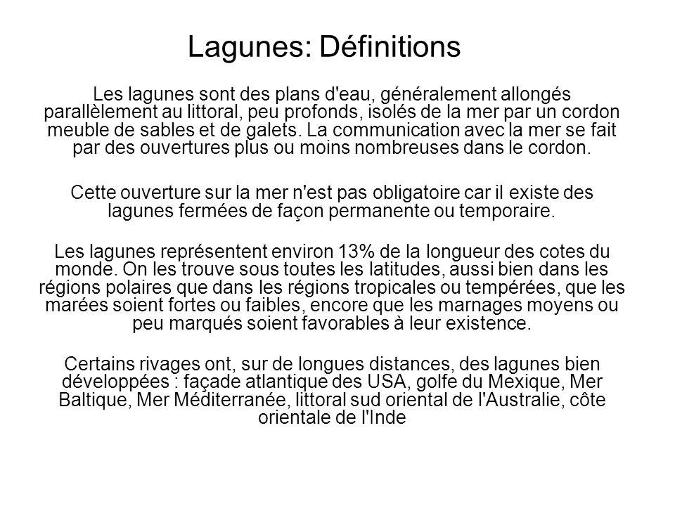 Lagunes: Définitions Les lagunes sont des plans d'eau, généralement allongés parallèlement au littoral, peu profonds, isolés de la mer par un cordon m