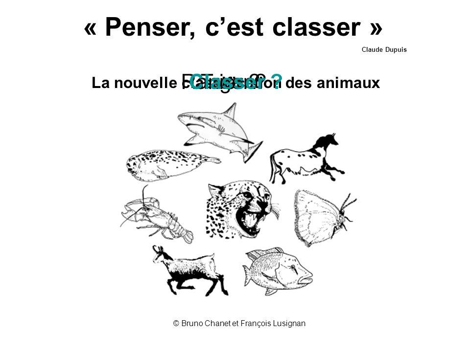 « Penser, cest classer » Claude Dupuis La nouvelle classification des animaux © Bruno Chanet et François Lusignan Trier ?Ranger ?Classer ?