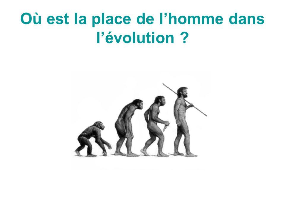 Où est la place de lhomme dans lévolution ?
