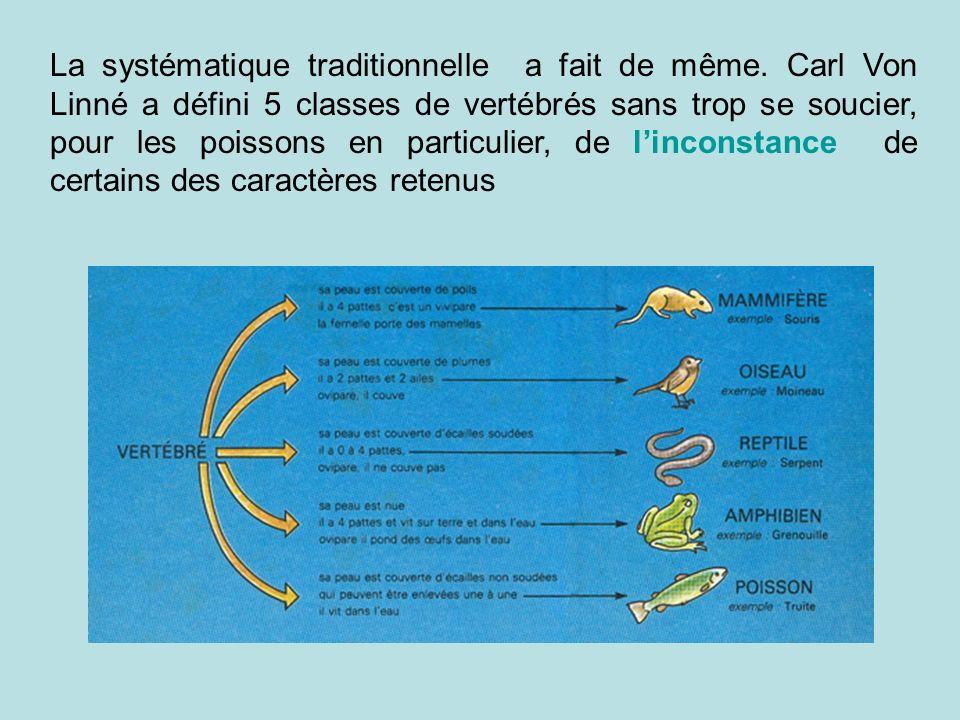 La systématique traditionnelle a fait de même. Carl Von Linné a défini 5 classes de vertébrés sans trop se soucier, pour les poissons en particulier,