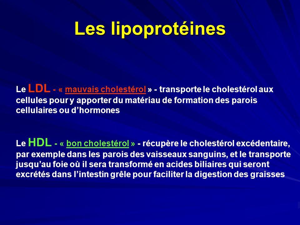 Les lipoprotéines Le LDL - « mauvais cholestérol » - transporte le cholestérol aux cellules pour y apporter du matériau de formation des parois cellul