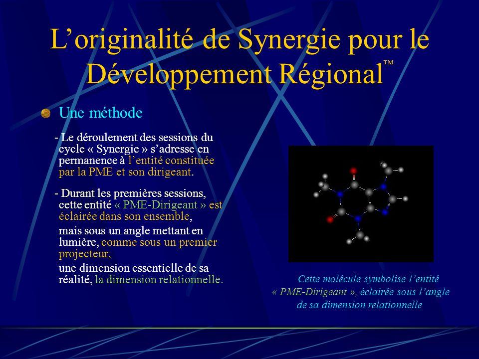 Une méthode - Le déroulement des sessions du cycle « Synergie » sadresse en permanence à lentité constituée par la PME et son dirigeant.