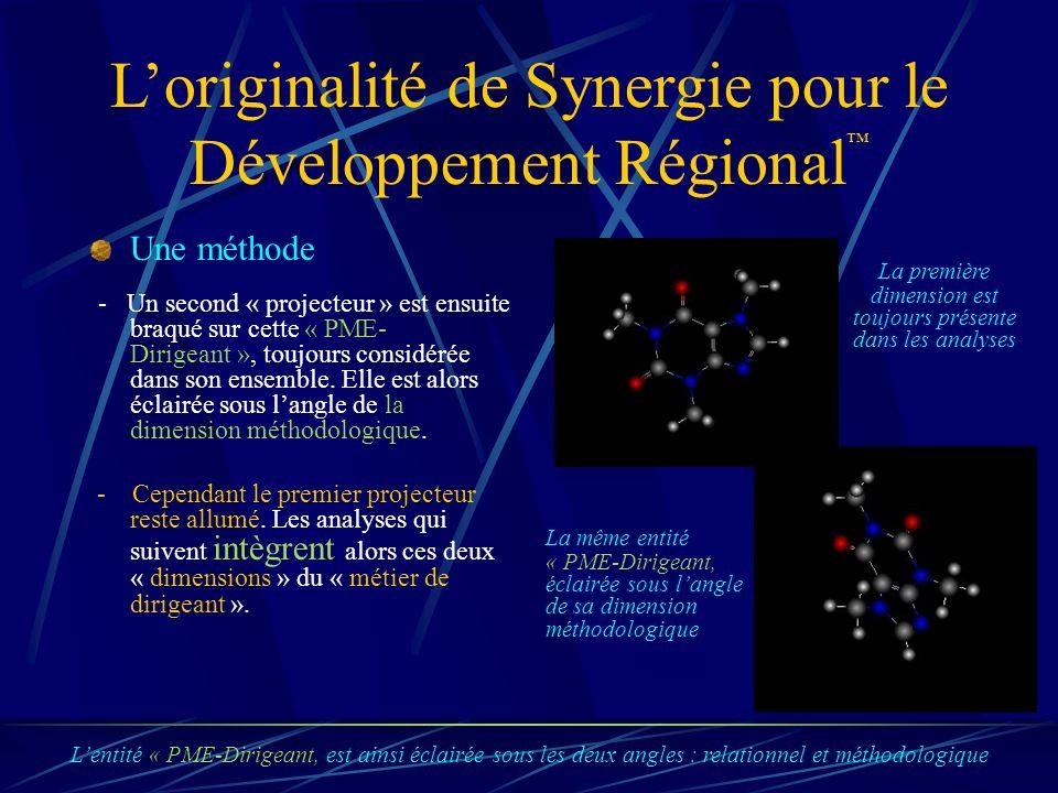 Loriginalité de Synergie pour le Développement Régional Une méthode - Un second « projecteur » est ensuite braqué sur cette « PME- Dirigeant », toujours considérée dans son ensemble.