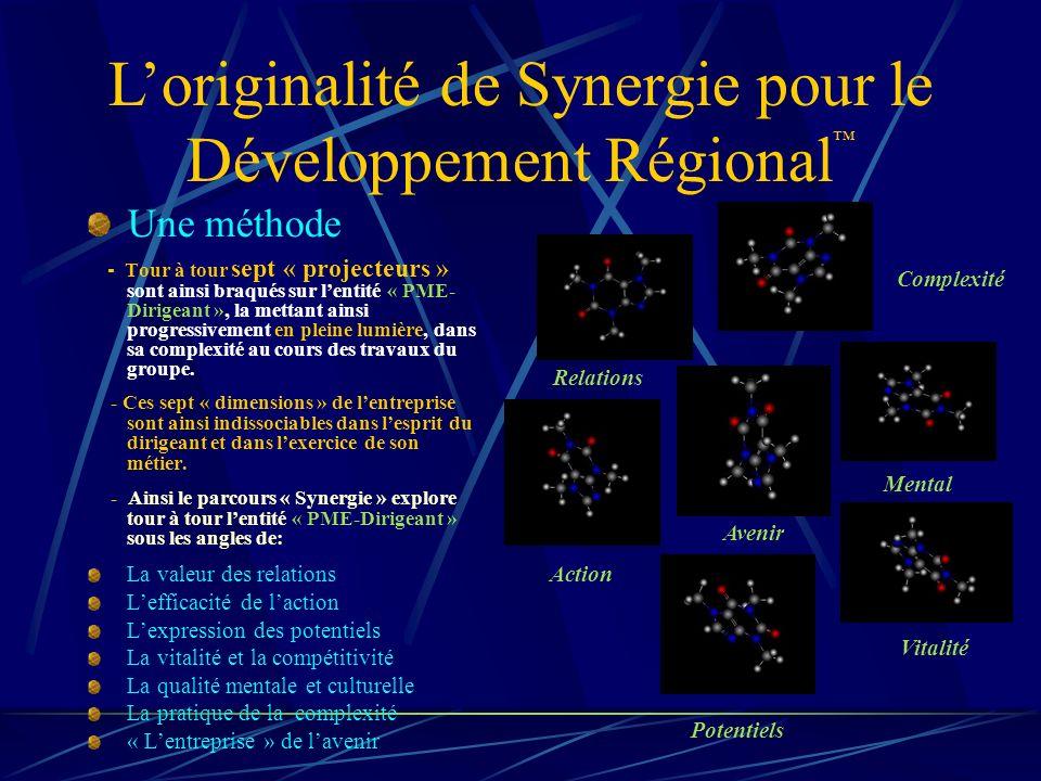 Loriginalité de Synergie pour le Développement Régional Une méthode - T our à tour sept « projecteurs » sont ainsi braqués sur lentité « PME- Dirigeant », la mettant ainsi progressivement en pleine lumière, dans sa complexité au cours des travaux du groupe.