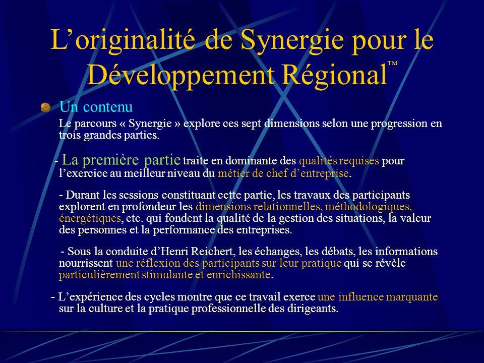 Loriginalité de Synergie pour le Développement Régional Un contenu Le parcours « Synergie » explore ces sept dimensions selon une progression en trois grandes parties.