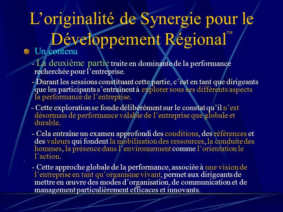 Loriginalité de Synergie pour le Développement Régional Un contenu - La deuxième partie traite en dominante de la performance recherchée pour lentreprise.