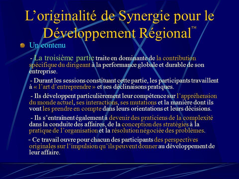 Loriginalité de Synergie pour le Développement Régional Un contenu - La troisième partie traite en dominante de la contribution spécifique du dirigeant à la performance globale et durable de son entreprise.