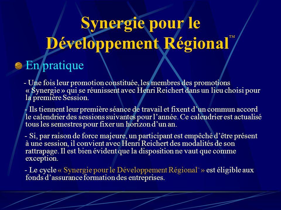 Synergie pour le Développement Régional En pratique - Une fois leur promotion constituée, les membres des promotions « Synergie » qui se réunissent avec Henri Reichert dans un lieu choisi pour la première Session.