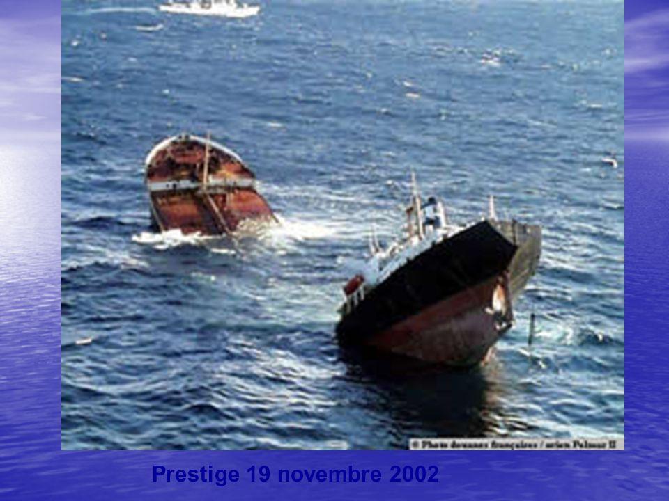 Prestige 19 novembre 2002