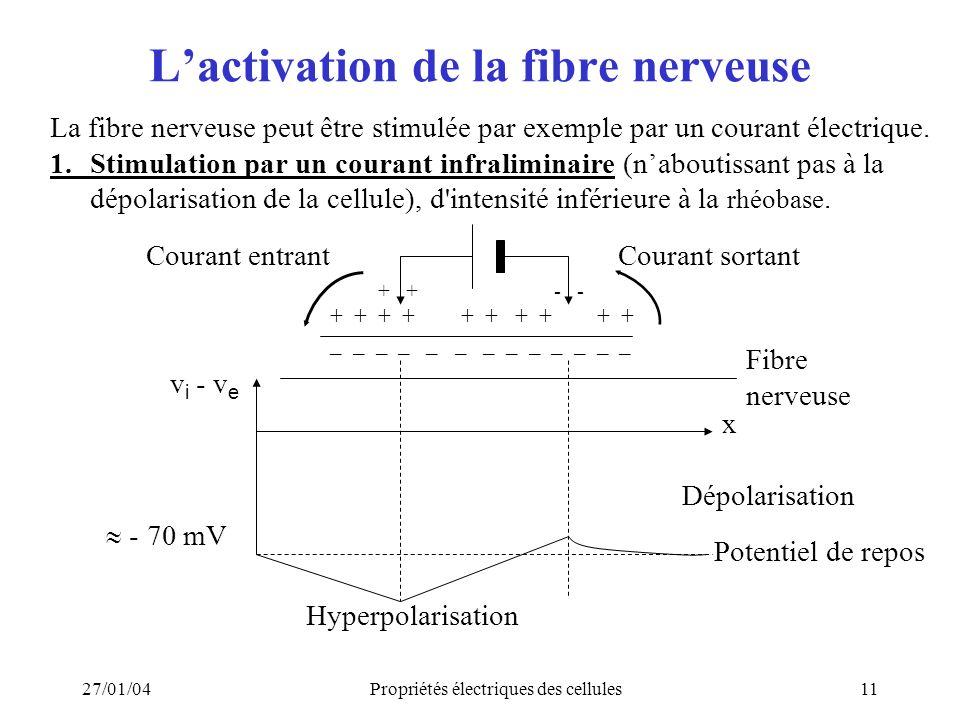 27/01/04Propriétés électriques des cellules11 Lactivation de la fibre nerveuse La fibre nerveuse peut être stimulée par exemple par un courant électri