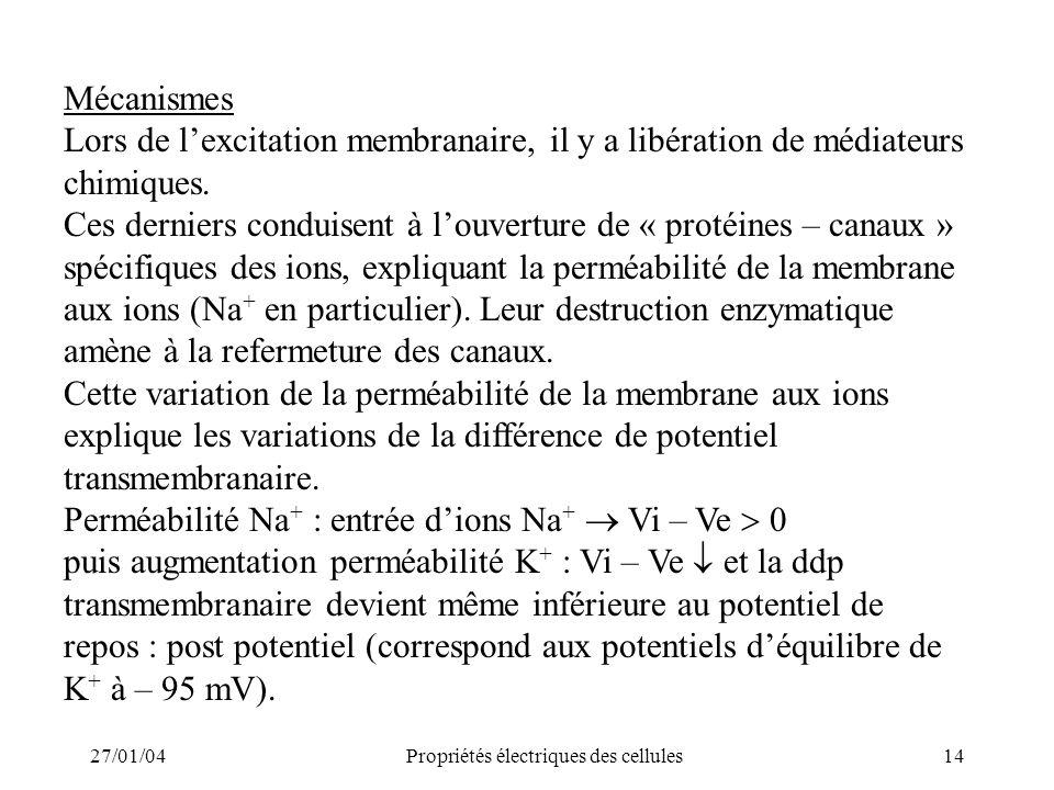 27/01/04Propriétés électriques des cellules14 Mécanismes Lors de lexcitation membranaire, il y a libération de médiateurs chimiques. Ces derniers cond