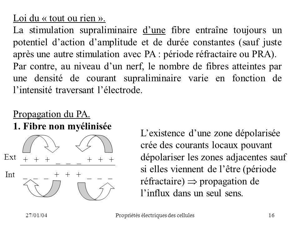 27/01/04Propriétés électriques des cellules16 Loi du « tout ou rien ». La stimulation supraliminaire dune fibre entraîne toujours un potentiel daction