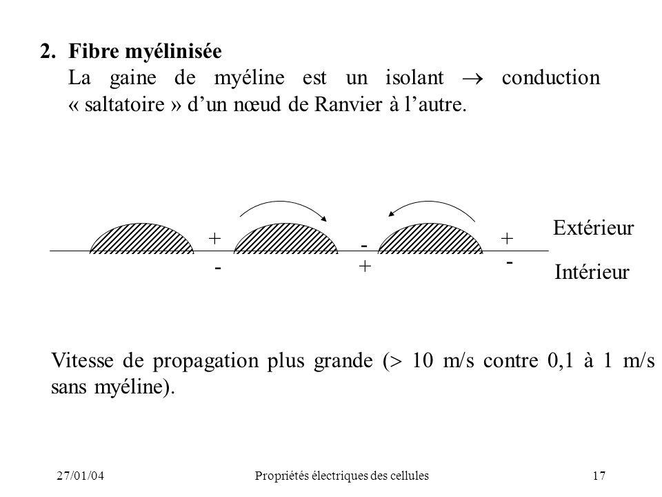 27/01/04Propriétés électriques des cellules17 2.Fibre myélinisée La gaine de myéline est un isolant conduction « saltatoire » dun nœud de Ranvier à la
