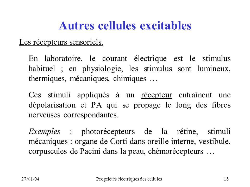 27/01/04Propriétés électriques des cellules18 Autres cellules excitables Les récepteurs sensoriels. En laboratoire, le courant électrique est le stimu