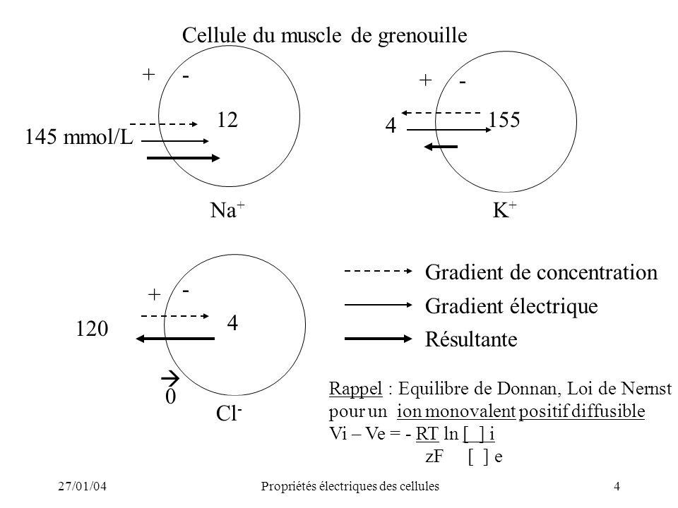 27/01/04Propriétés électriques des cellules4 Cellule du muscle de grenouille 145 mmol/L +- 12 Na + 4 +- 155 K+K+ 4 + - 120 Cl - 0 Gradient de concentr