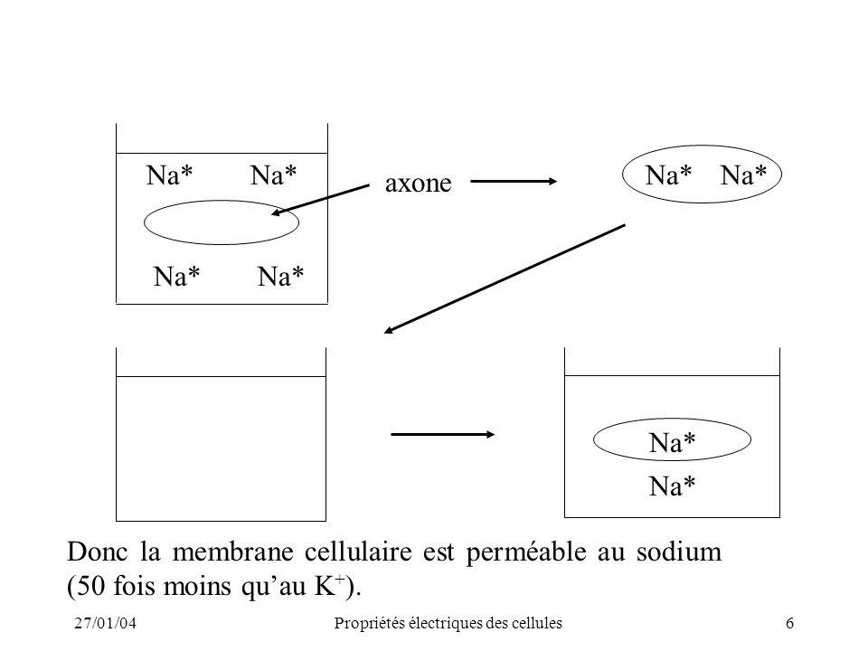 27/01/04Propriétés électriques des cellules6 Na* axone Donc la membrane cellulaire est perméable au sodium (50 fois moins quau K + ).