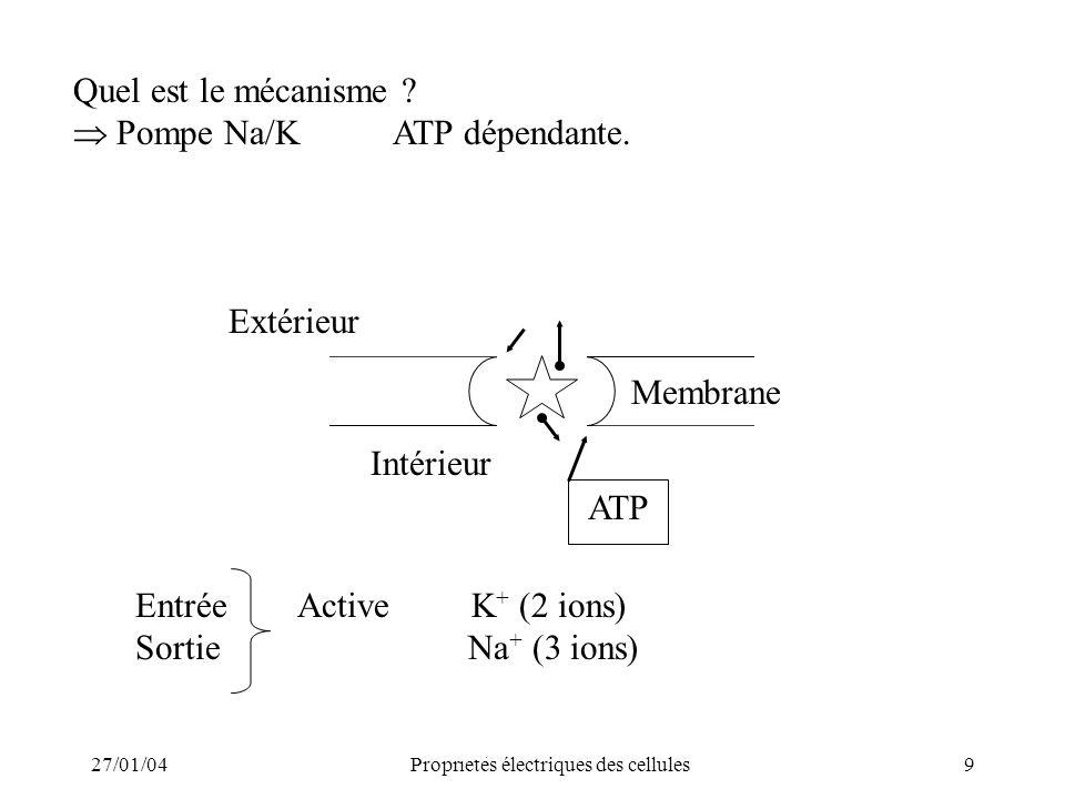 27/01/04Propriétés électriques des cellules9 Quel est le mécanisme ? Pompe Na/KATP dépendante. Extérieur Intérieur ATP Membrane Entrée Active K + (2 i