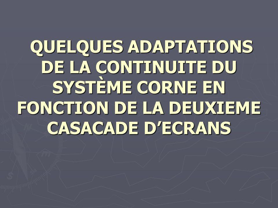 QUELQUES ADAPTATIONS DE LA CONTINUITE DU SYSTÈME CORNE EN FONCTION DE LA DEUXIEME CASACADE DECRANS QUELQUES ADAPTATIONS DE LA CONTINUITE DU SYSTÈME CO
