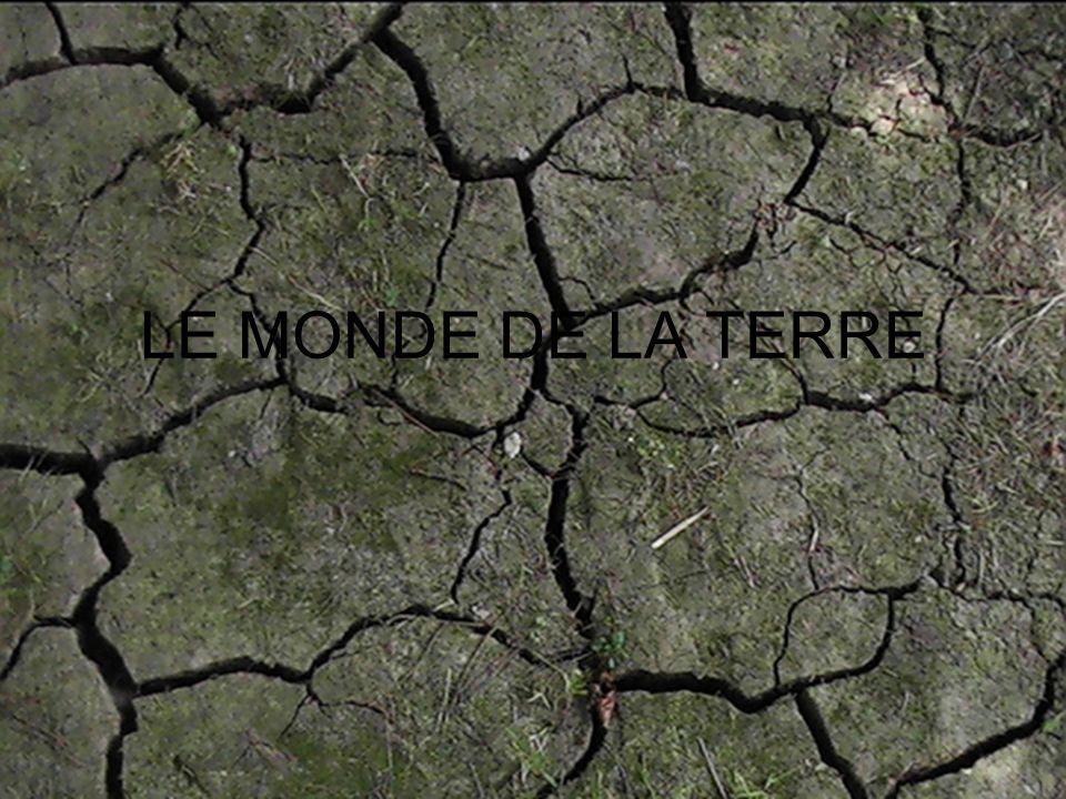 LE MONDE DE LA TERRE