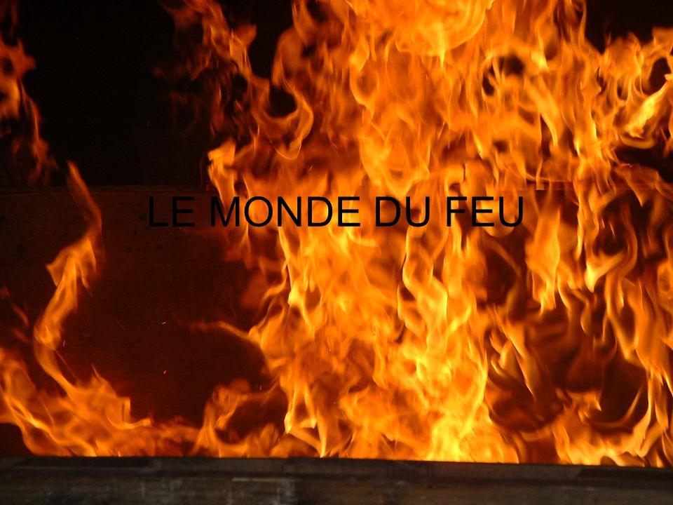 LE MONDE DU FEU