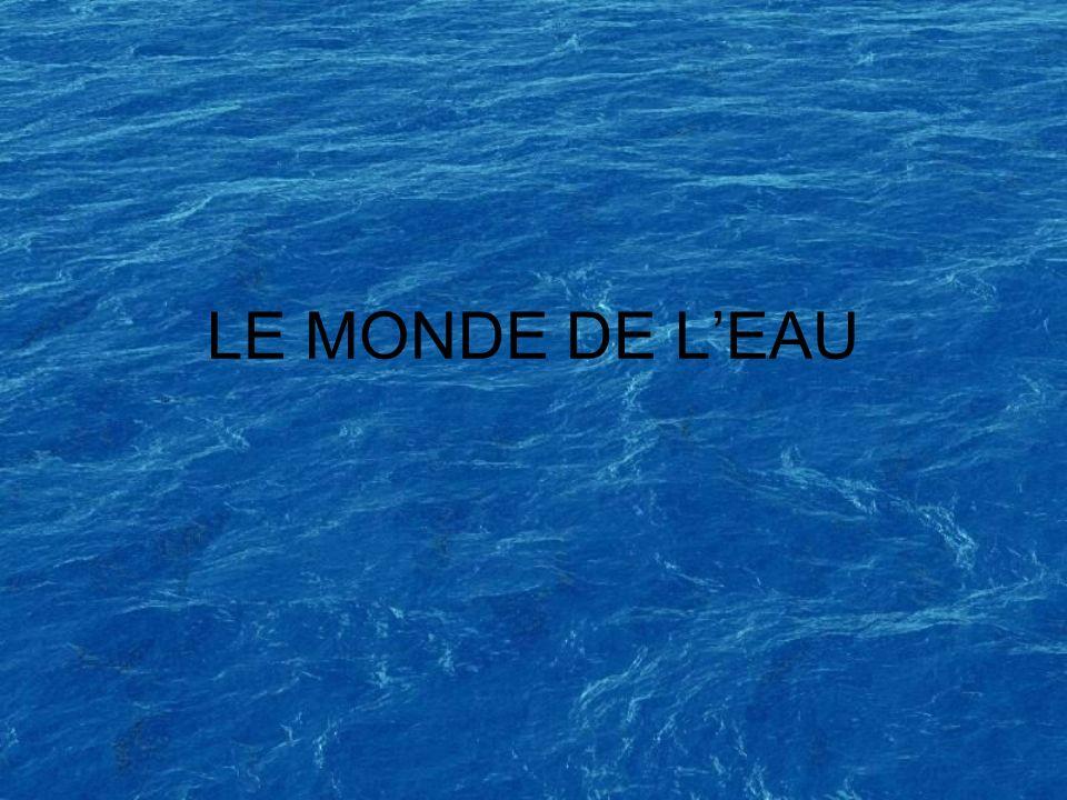 LE MONDE DE LEAU