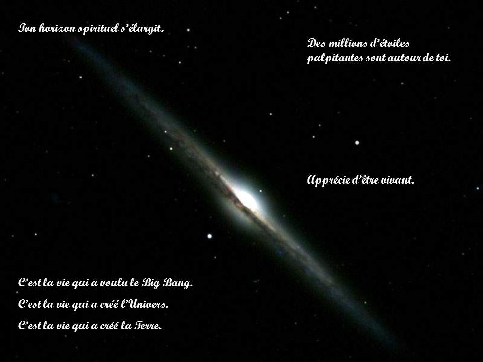 Ton horizon spirituel sélargit. Des millions détoiles palpitantes sont autour de toi. Cest la vie qui a voulu le Big Bang. Cest la vie qui a créé lUni