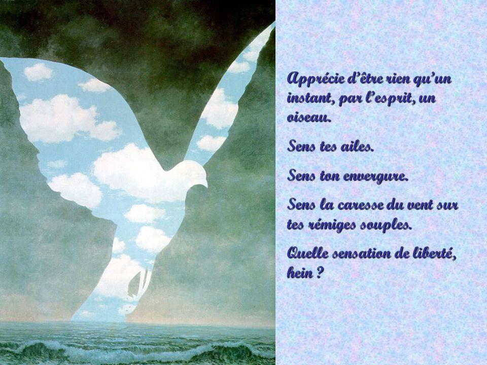 Apprécie dêtre rien quun instant, par lesprit, un oiseau. Sens tes ailes. Sens ton envergure. Sens la caresse du vent sur tes rémiges souples. Quelle