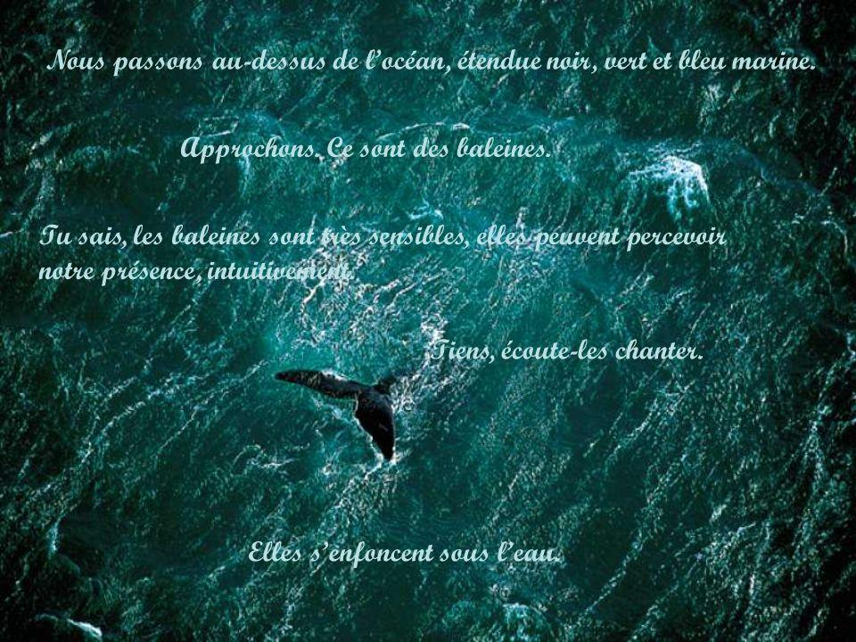 Tu sais, les baleines sont très sensibles, elles peuvent percevoir notre présence, intuitivement. Tiens, écoute-les chanter. Elles senfoncent sous lea