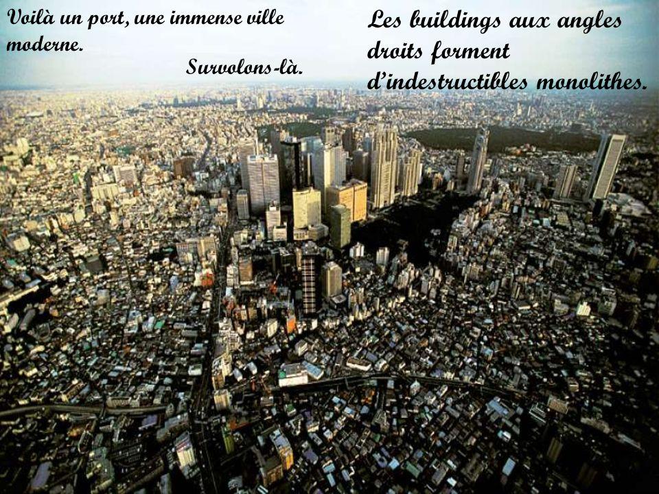 Voilà un port, une immense ville moderne. Survolons-là. Les buildings aux angles droits forment dindestructibles monolithes.