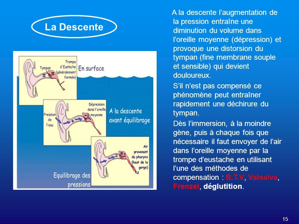 15 La Descente A la descente laugmentation de la pression entraîne une diminution du volume dans loreille moyenne (dépression) et provoque une distors
