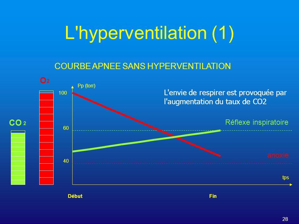 28 L'hyperventilation (1) COURBE APNEE SANS HYPERVENTILATION Pp (torr) tps O CO 2 2 DébutFin 100 60 40 Réflexe inspiratoire anoxie L'envie de respirer