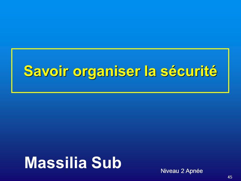 45 Savoir organiser la sécurité Niveau 2 Apnée Massilia Sub