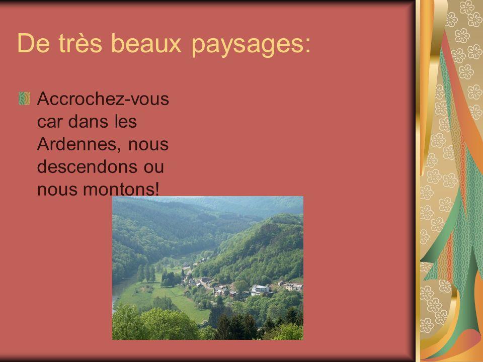 De très beaux paysages: Accrochez-vous car dans les Ardennes, nous descendons ou nous montons!