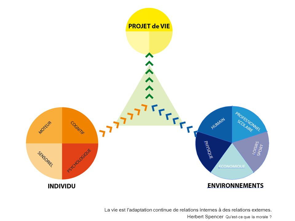 La vie est l'adaptation continue de relations internes à des relations externes. Herbert Spencer Qu'est-ce que la morale ?