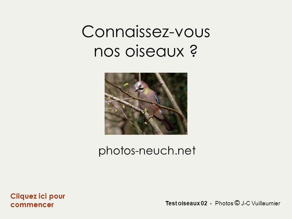 Connaissez-vous nos oiseaux ? Cliquez ici pour commencer Test oiseaux 02 - Photos © J-C Vuilleumier photos-neuch.net