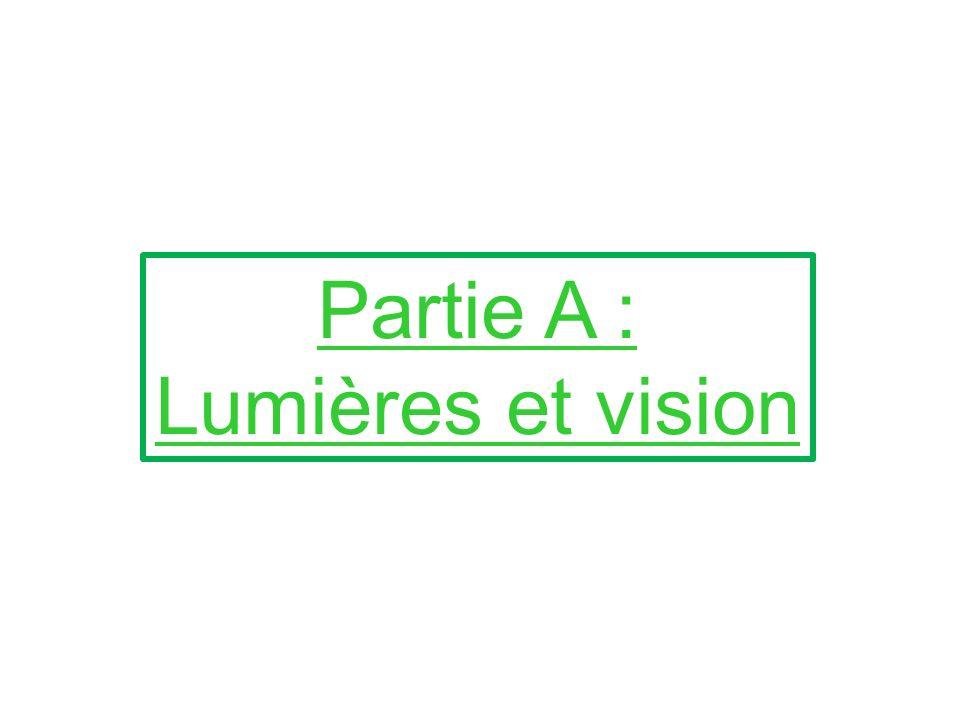 Partie A : Lumières et vision