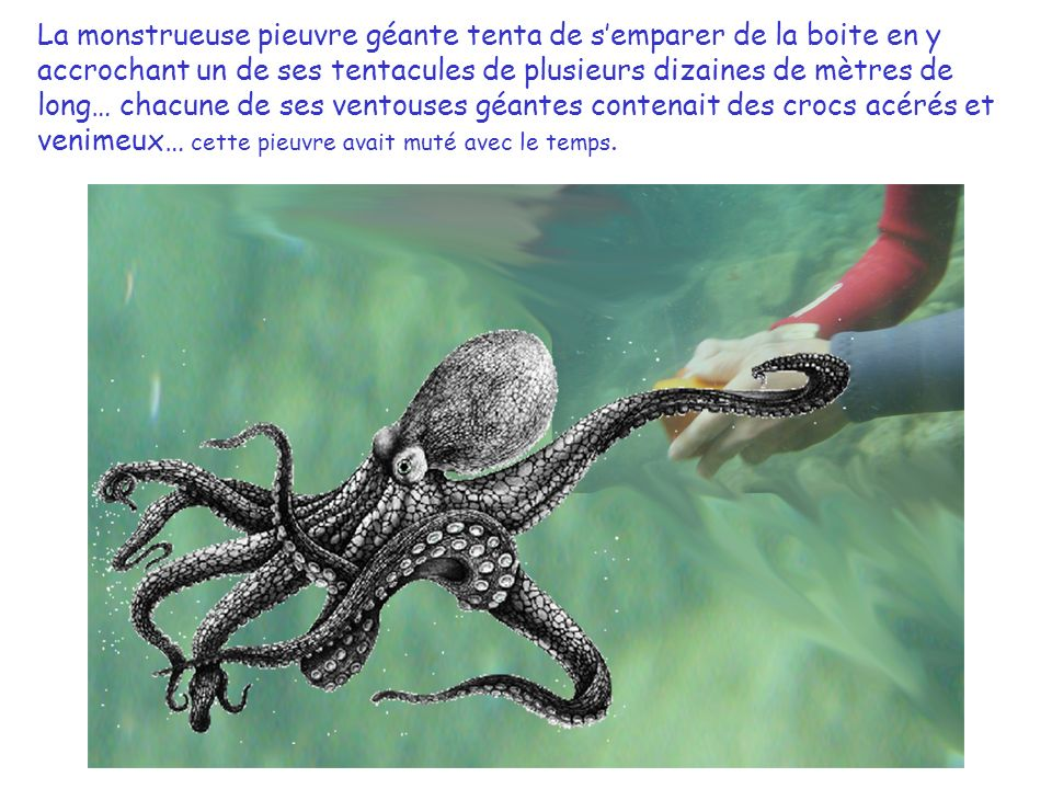 Mika sortit du paquet une petite boite en bois, quand sortit de sous un rocher, une pieuvre géante avec des tentacules de plusieurs dizaines de mètres