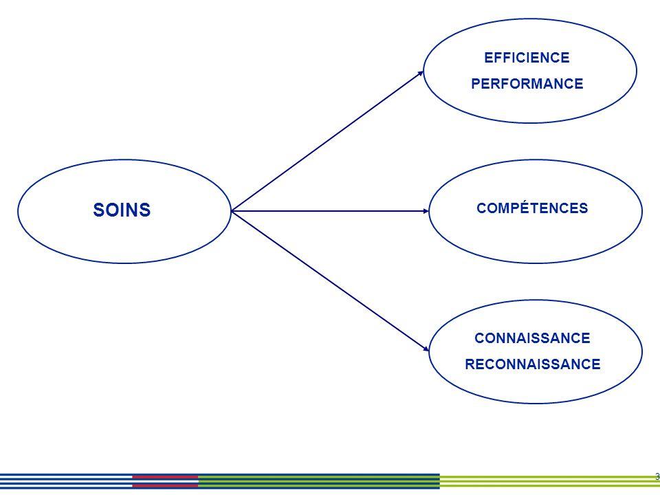 3 COMPÉTENCES EFFICIENCE PERFORMANCE SOINS CONNAISSANCE RECONNAISSANCE